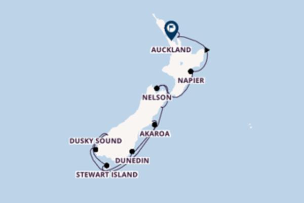Neuseelands Wunder