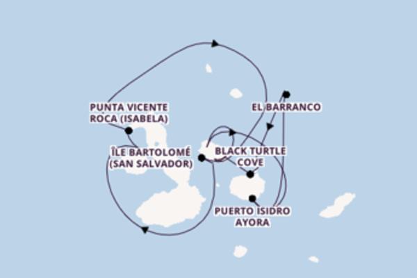 Contemplez à bord du bateau Celebrity Xploration, la destination: Punta Vicente Roca (Isabela)