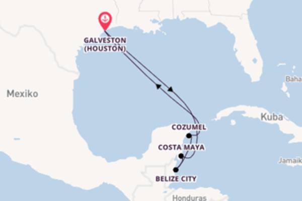 Traumhafte Reise nach Galveston (Houston)