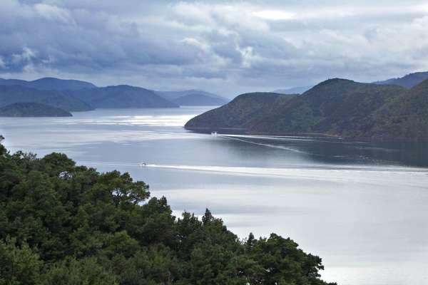 Marlborough Sound, Nieuw-Zeeland