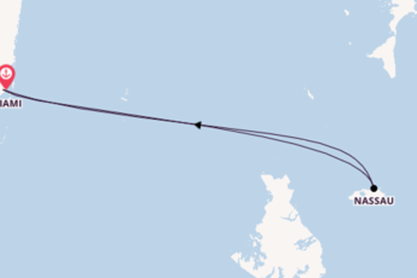 Incantevole viaggio verso Miami