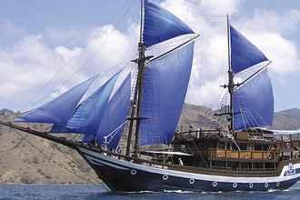 Sea Safari VII
