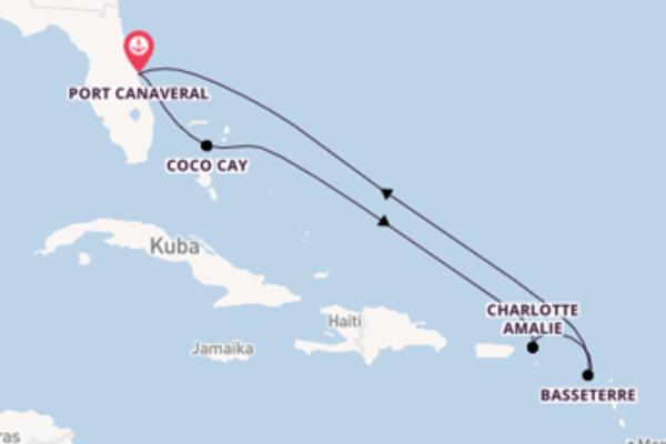 Atemberaubende Reise über Charlotte Amalie in 8 Tagen