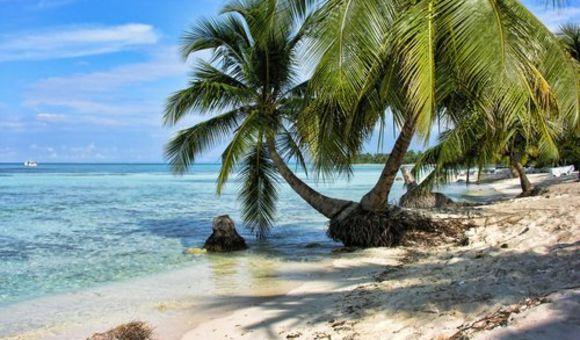 加勒比海1
