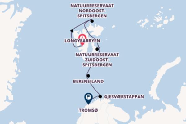 Ervaar Natuurreservaat Nordoost-Spitsbergen met Silversea
