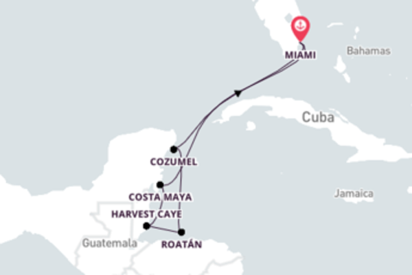8 day cruise with the Insignia to Miami