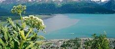 Nordroute Alaskas erleben