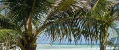 Bahamas erleben ab/bis Charleston