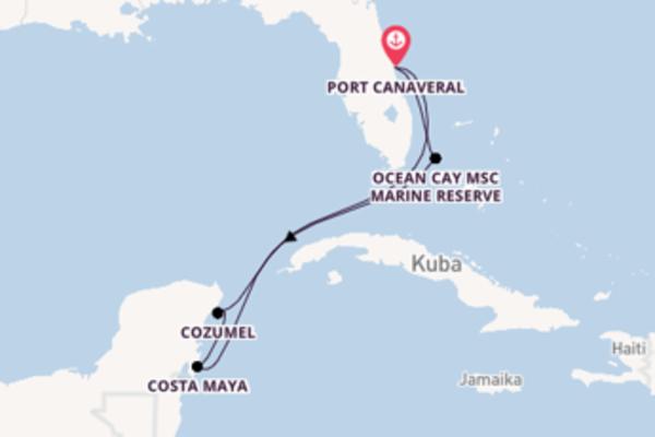 Kreuzfahrt mit der MSC Meraviglia nach Port Canaveral
