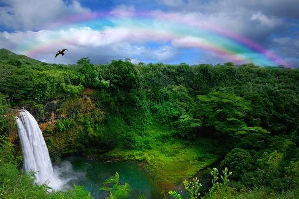 16 jours pour découvrir Hilo (Hawaï)