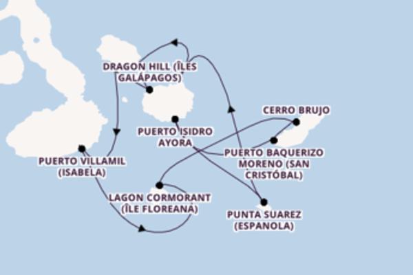 Sublime croisière de 8 jours avec Celebrity Cruises