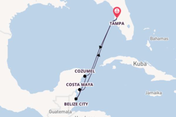 Tampa und Belize City erleben