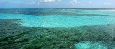 Die Vielfalt der Karibik entdecken