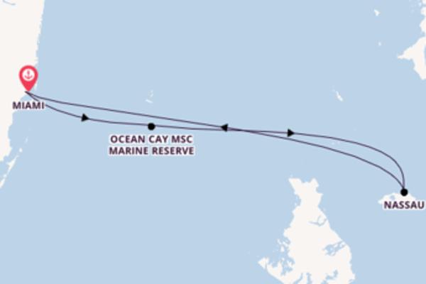 Wunderbare Kreuzfahrt über Ocean Cay MSC Marine Reserve ab Miami