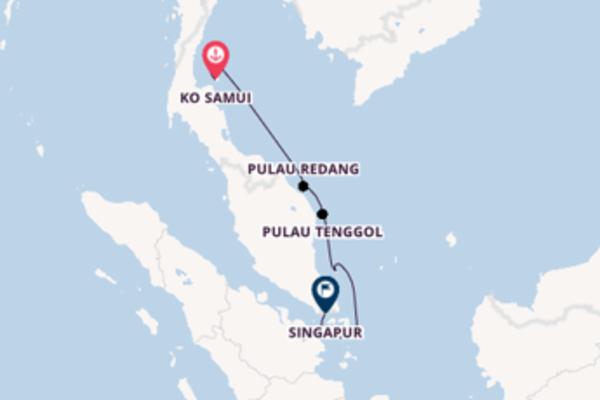 Von Ko Samui nach Singapur