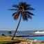 Ab/bis Havanna über Jamaica