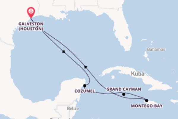 Großartige Reise nach Galveston