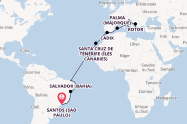 22 jours de navigation à bord du bateau MSC Musica depuis Santos (Sao Paulo)