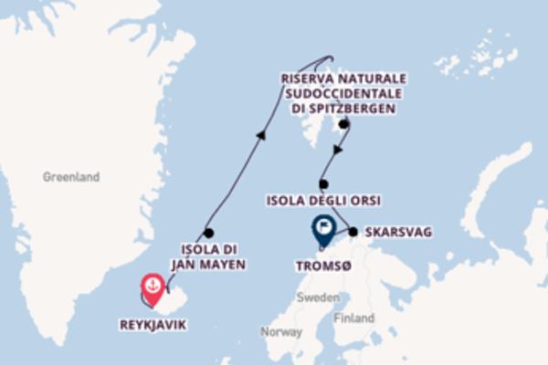 Da Reykjavik a Tromsø passando per Riserva Naturale Nordorientale di Spitzbergen in 14 giorni