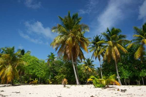 St. Vincent, St. Vincent und die Grenadinen