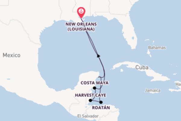 Lasciati affascinare da Harvest Caye partendo da New Orleans (Louisiana)