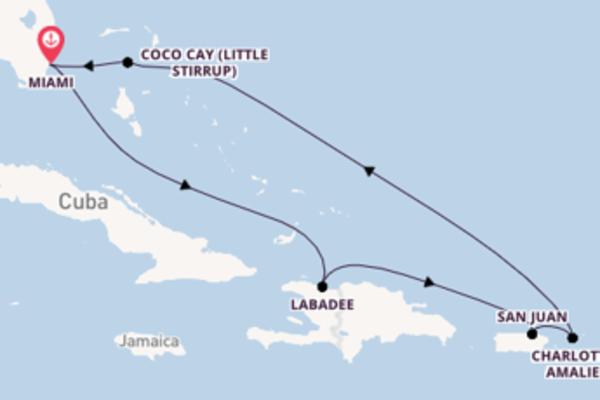 Épico passeio de 8 dias até Miami