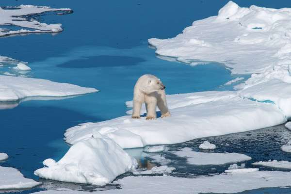 Nordenskiold glacier, Greenland