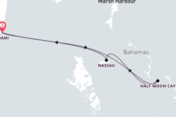 Navegue a bordo do Carnival Conquest em 5 dias