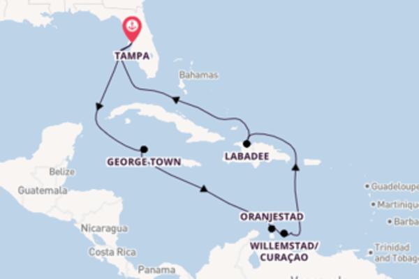 Viaggio di 12 giorni a bordo di Celebrity Constellation