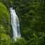 Vom Regenwald in die Karibik