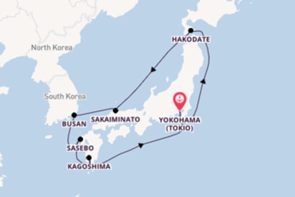 10-daagse cruise naar Hakodate