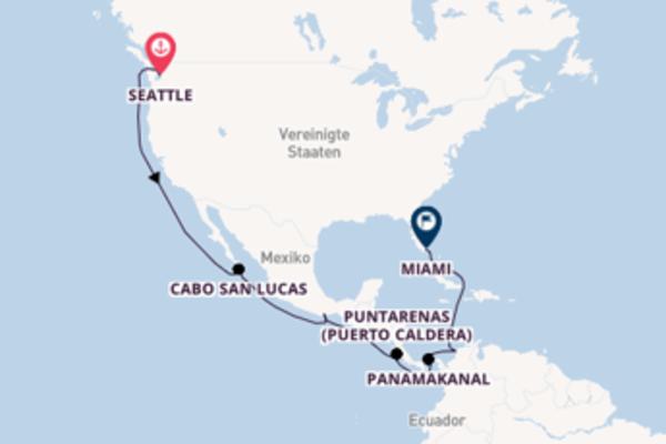 Seattle und Miami erleben
