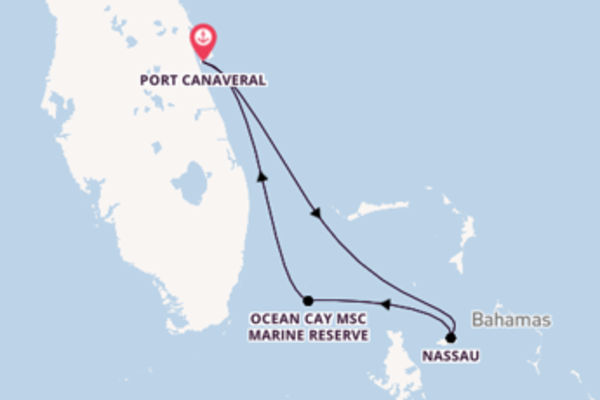8 day cruise from Port Canaveral