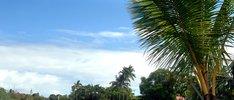 Hawaii und Südsee intensiv erleben