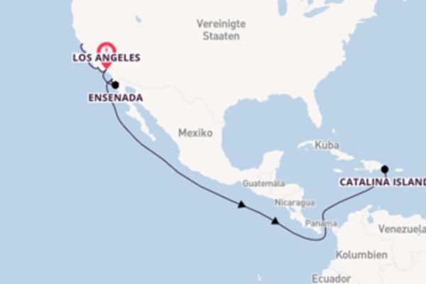 Begeisternde Reise über San Francisco in 10 Tagen