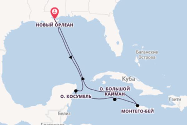 Карибская сказка из Нового Орлеана