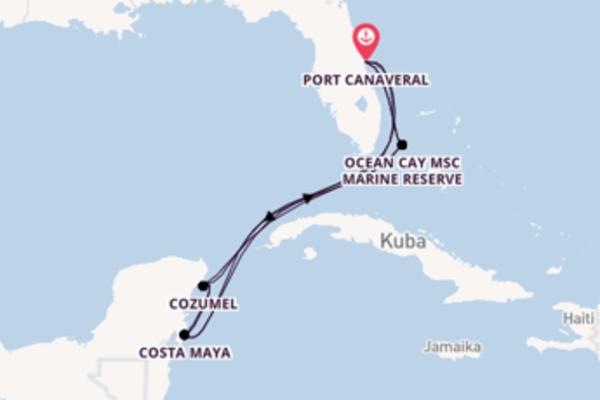 Port Canaveral und Ocean Cay MSC Marine Reserve genießen