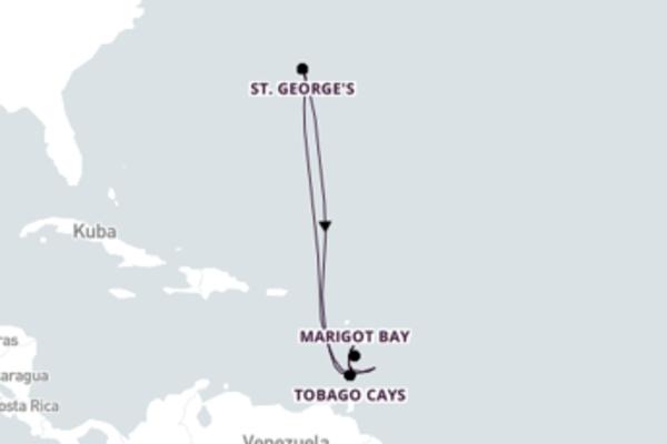 7 Nächte Grenadinen Inseln