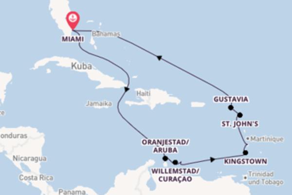 Eindrucksvolle Kreuzfahrt über Kralendijk ab Miami