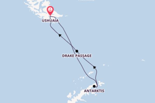Traumreise zur Antarktis