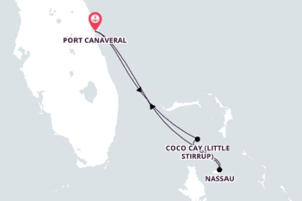 A bordo do Mariner of the Seas em uma viagem de 5 dias