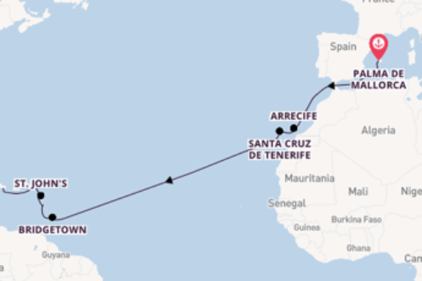 Bezoek het spectaculaire Santa Cruz de Tenerife