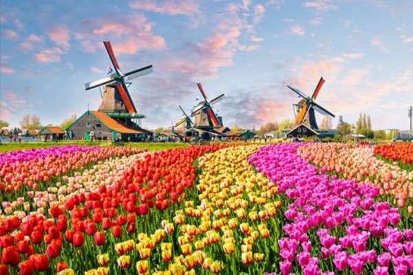 Born, Nederland