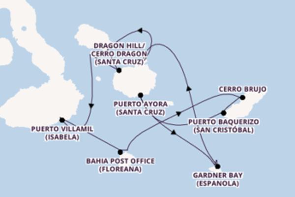 Aanschouw het spectaculaire Puerto Villamil