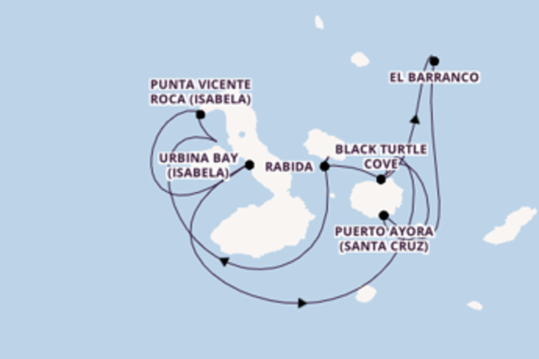 Cruise with Celebrity Cruises from Galapagos Islands, Ecuador