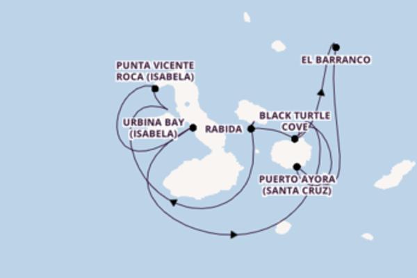 Cruise with Celebrity Cruises from Galapagos Islands, Ecuador