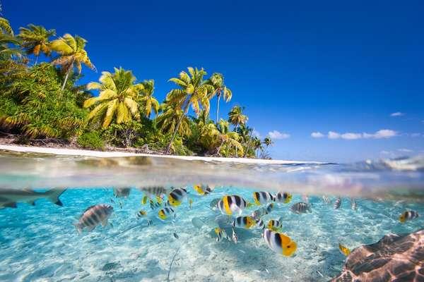 Port-Bouquet Bay, Neukaledonien