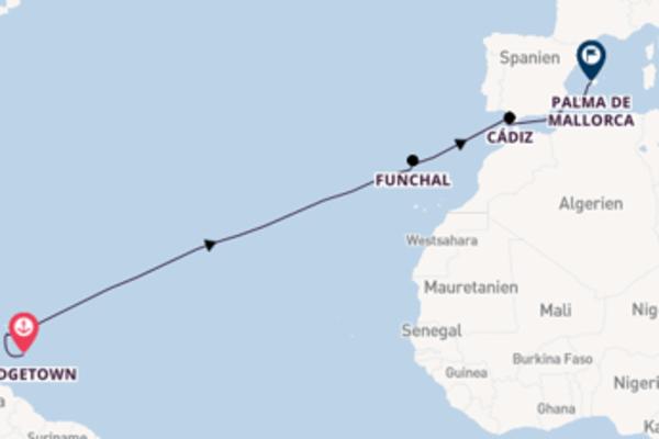 14-tägige Kreuzfahrt bis Palma de Mallorca