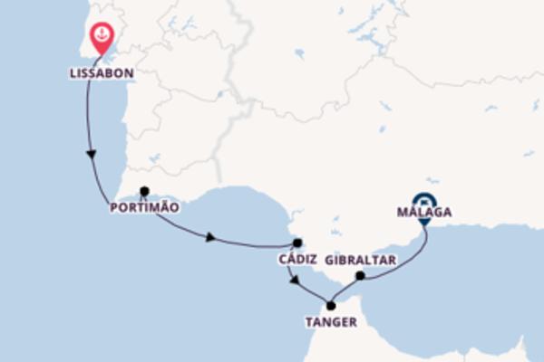 Herrliche Kreuzfahrt mit der Royal Clipper
