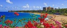 Traum ab Honolulu